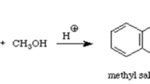 Synthesis of methyl salicylate