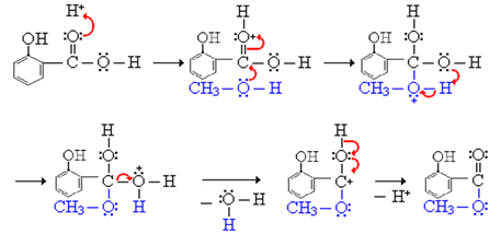 Synthesis of methyl salicylate - Labmonk