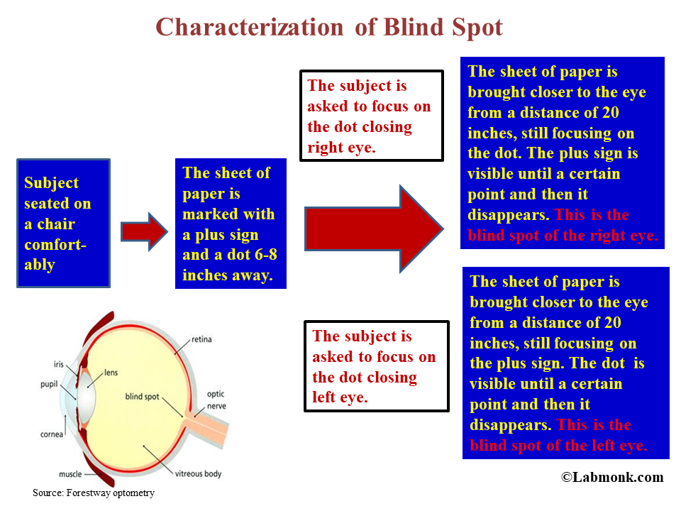 Characterization of blind spot - Labmonk