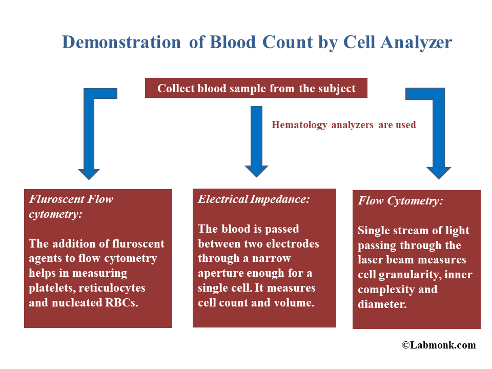 Demonstration of Complete blood count by cell analyzer - Labmonk