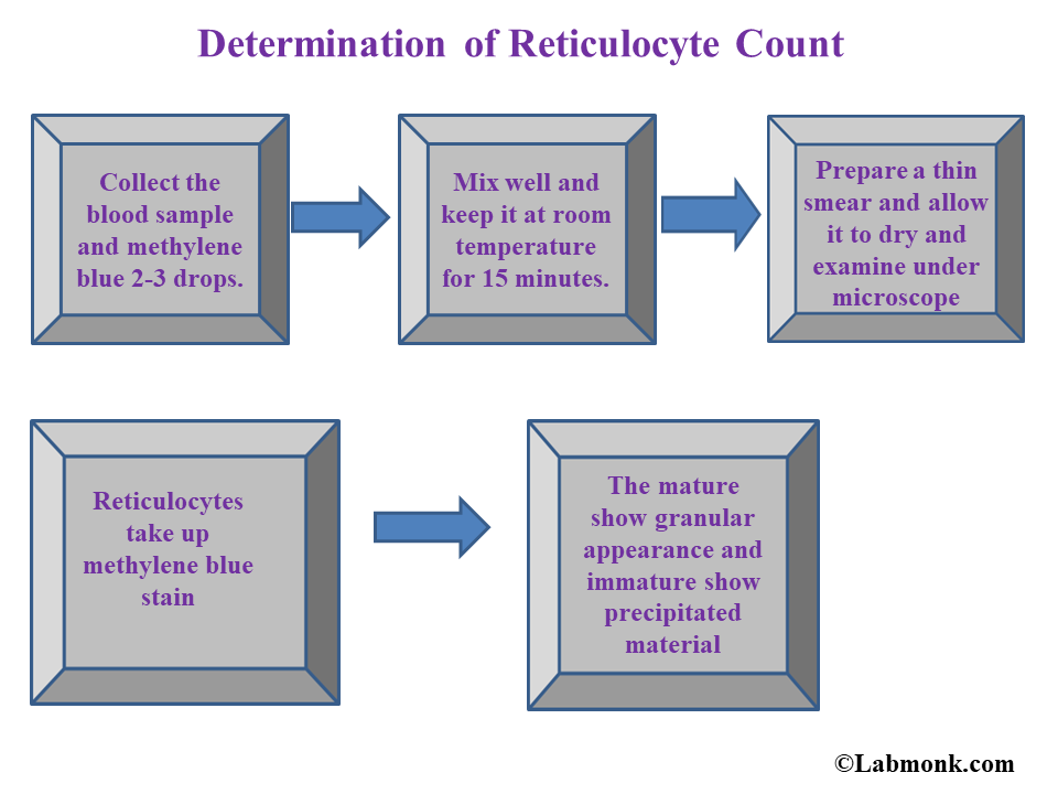 Determination Of Reticulocyte Count