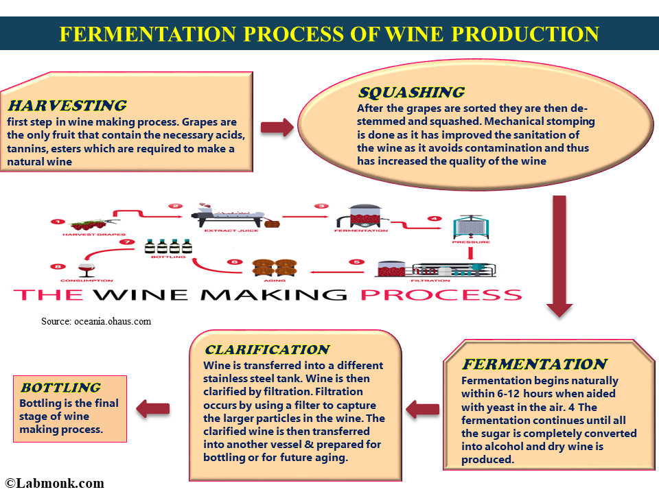 the long process of wine making using yeast fermentation method The fermentation process in wine making wine making is a long process after the best grapes have been harvested and pressed they have to go through a process called fermentation during pressing, when the grapes' skins are broken, yeast, or saccharomyees ellipsoideus.